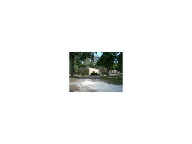 44650 State Road 19, Altoona, FL 32702 (MLS #G4847976) :: KELLER WILLIAMS CLASSIC VI