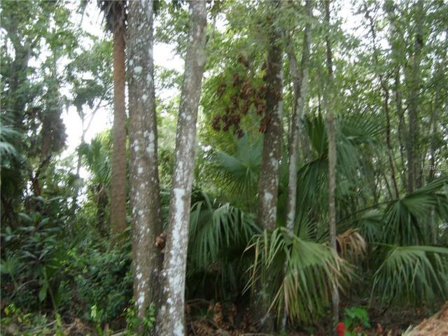 Cr 426, Lake Panasoffkee, FL 33538 (MLS #G4847999) :: The Duncan Duo Team