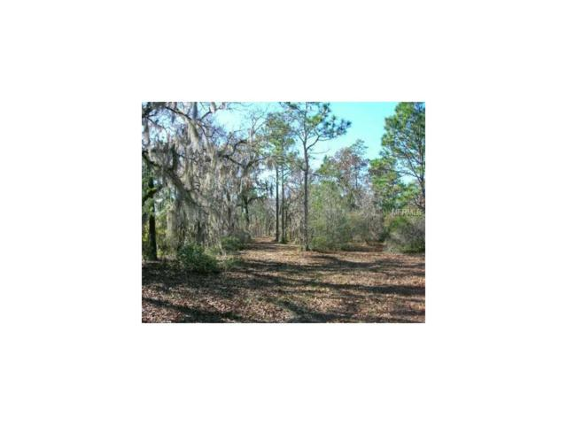 Dennis Howell, Perry, FL 32347 (MLS #G4848345) :: The Jack Bataoel Real Estate Group