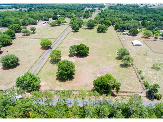 Se 150Th Avenue Rd, Weirsdale, FL 32195 (MLS #G4848477) :: G World Properties