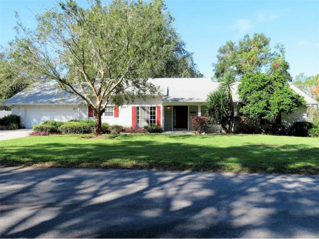 9884 Cr 114A, Wildwood, FL 34785 (MLS #G4848524) :: The Duncan Duo & Associates