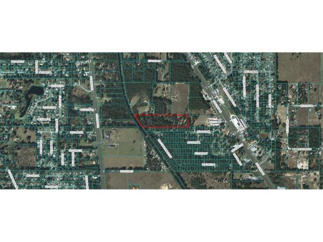 12180 Us Highway 441, Belleview, FL 34420 (MLS #G4849228) :: G World Properties