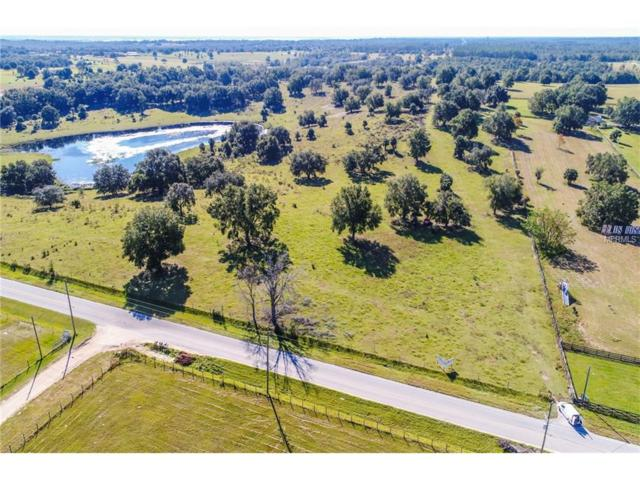 4728 Marion County Road, Weirsdale, FL 32195 (MLS #G4849246) :: G World Properties