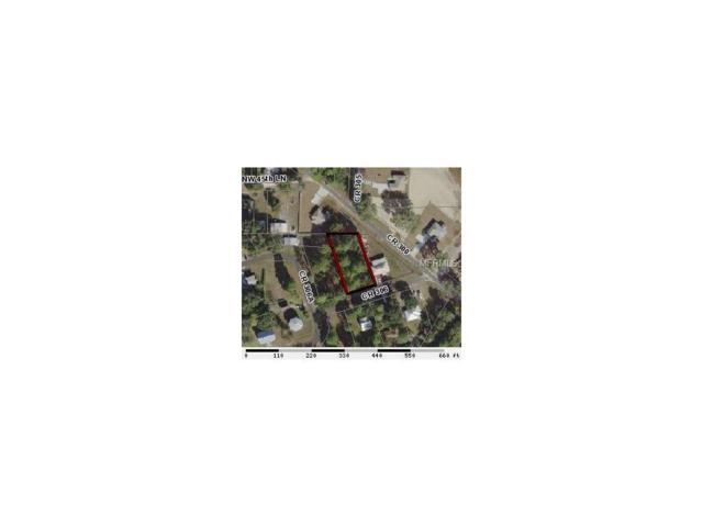 Cr 306, Lake Panasoffkee, FL 33538 (MLS #G4849362) :: The Duncan Duo Team