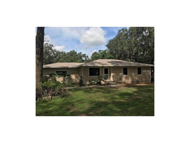 18929 Orange Avenue, Groveland, FL 34736 (MLS #G4849514) :: RealTeam Realty