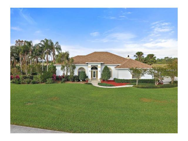 29415 David Court, Tavares, FL 32778 (MLS #G4849591) :: KELLER WILLIAMS CLASSIC VI