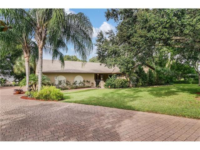 13215 Maria Avenue, Clermont, FL 34711 (MLS #G4849654) :: RealTeam Realty