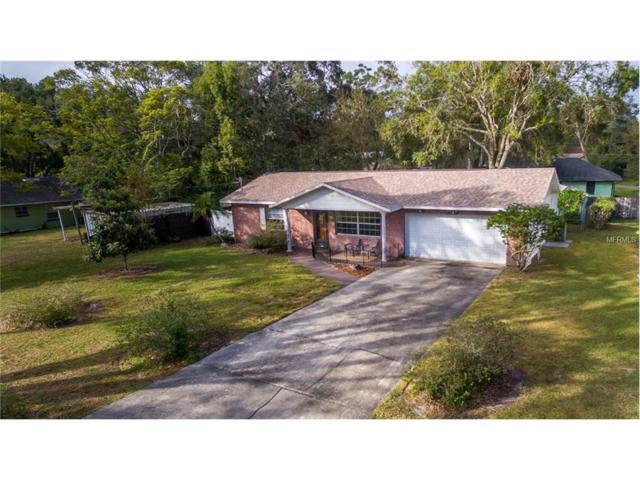 171 Groveland Road, Mount Dora, FL 32757 (MLS #G4849684) :: KELLER WILLIAMS CLASSIC VI