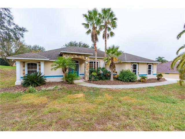11340 Alameda Sandra Drive, Clermont, FL 34711 (MLS #G4849860) :: KELLER WILLIAMS CLASSIC VI