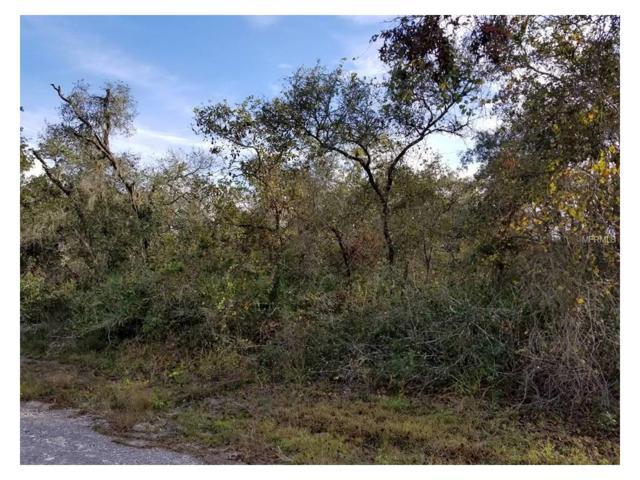 Coral Rock Drive, Webster, FL 33597 (MLS #G4849878) :: Dalton Wade Real Estate Group
