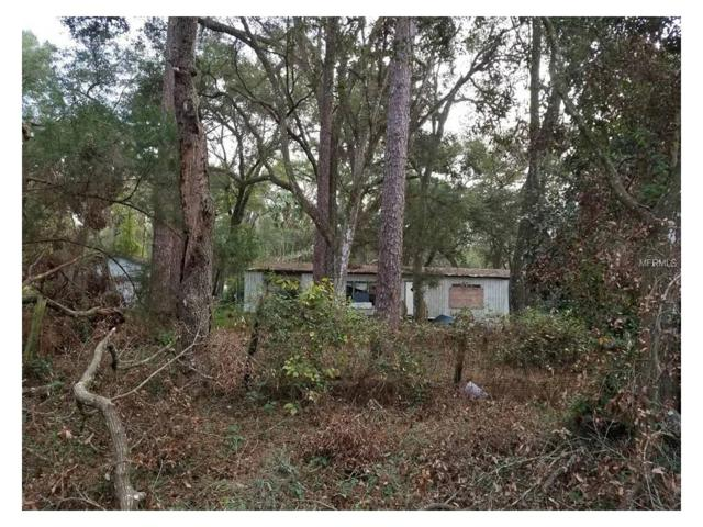 4655 110TH Place, Webster, FL 33597 (MLS #G4849879) :: The Duncan Duo Team