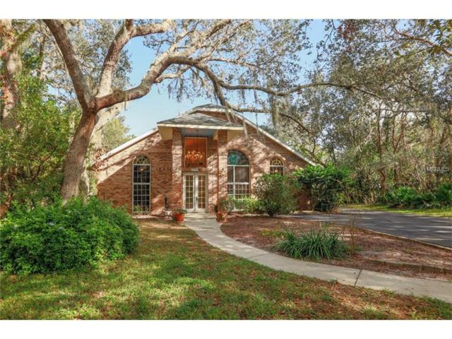 31046 Nocatee Trail, Sorrento, FL 32776 (MLS #G4849990) :: Griffin Group