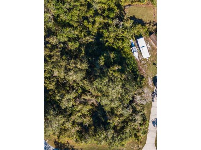 Lot 11 J And J Drive, Tavares, FL 32778 (MLS #G4850368) :: G World Properties