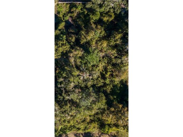 Lot 13 J And J Drive, Tavares, FL 32778 (MLS #G4850369) :: G World Properties