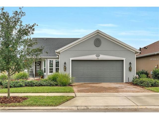 294 Silver Maple Road, Groveland, FL 34736 (MLS #G4850539) :: KELLER WILLIAMS CLASSIC VI