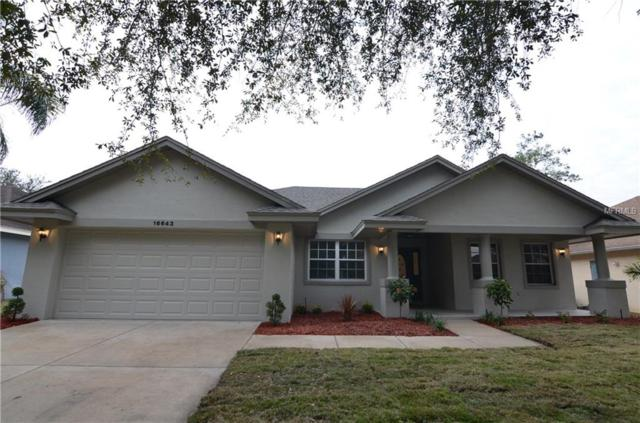 16643 Rockwell Heights Lane, Clermont, FL 34711 (MLS #G4850695) :: Mark and Joni Coulter | Better Homes and Gardens