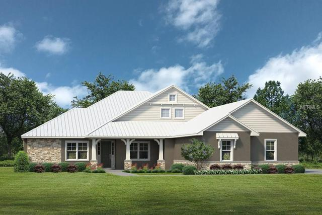 Lot E1 Live Oak Dr, Deer Island, FL 32778 (MLS #G4850738) :: The Duncan Duo Team