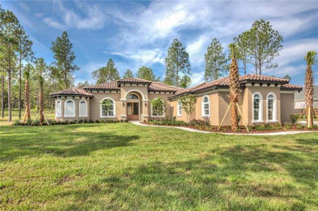 424 Two Lakes Lane, Eustis, FL 32726 (MLS #G4850924) :: Griffin Group