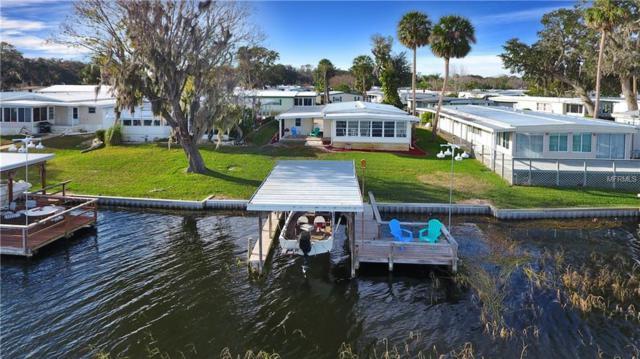 16 Big Tree Drive, Fruitland Park, FL 34731 (MLS #G4851356) :: The Duncan Duo Team
