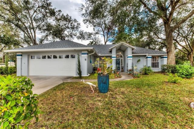 616 Chautauqua Drive, Mount Dora, FL 32757 (MLS #G4851624) :: The Lockhart Team