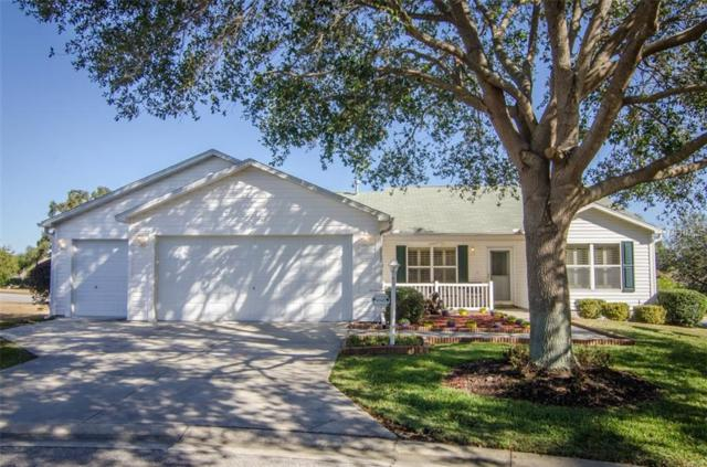 8345 178TH FERNBROOK Place, The Villages, FL 32162 (MLS #G4851737) :: Realty Executives in The Villages