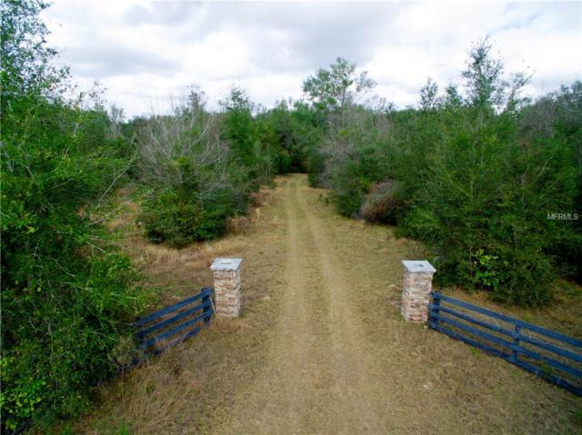 14329 170TH Street, Weirsdale, FL 32195 (MLS #G4852009) :: The Duncan Duo Team