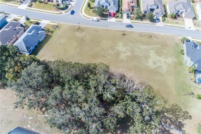 8220 Bridgeport Bay Circle, Mount Dora, FL 32757 (MLS #G4852035) :: Cartwright Realty