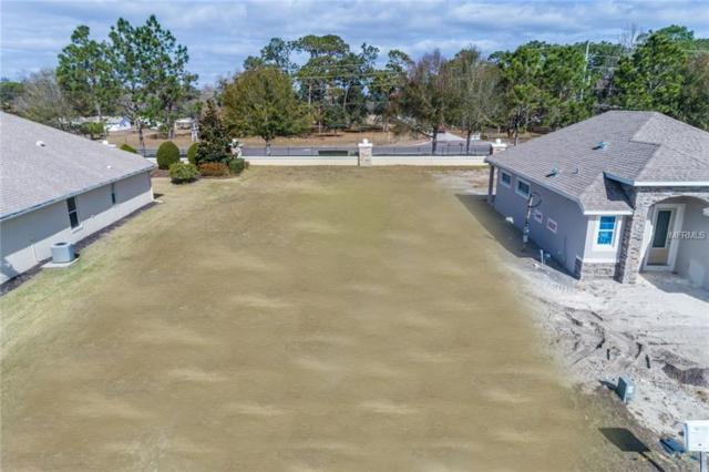 8101 Bridgeport Bay Circle, Mount Dora, FL 32757 (MLS #G4852038) :: The Duncan Duo Team