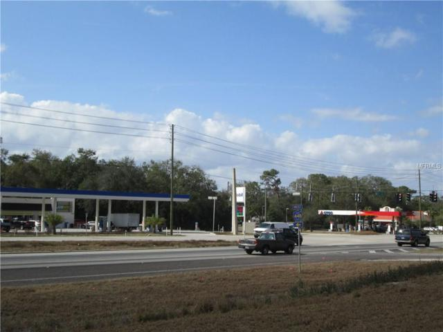 4411 N Orange Blossom Trail, Mount Dora, FL 32757 (MLS #G4852054) :: Team Virgadamo