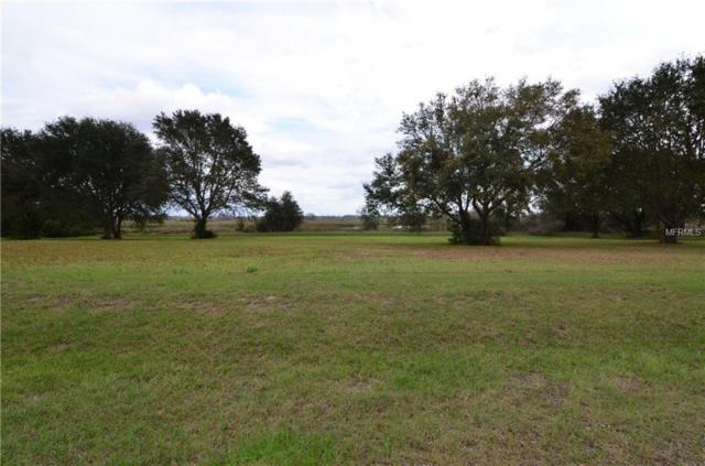 Lot 34 Royal Palm Drive, Groveland, FL 34736 (MLS #G4852905) :: Premium Properties Real Estate Services