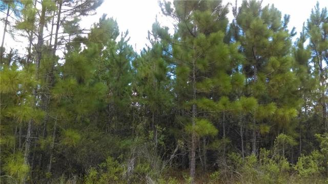 S Fork Ranch Drive, Clermont, FL 34714 (MLS #G4852925) :: Griffin Group