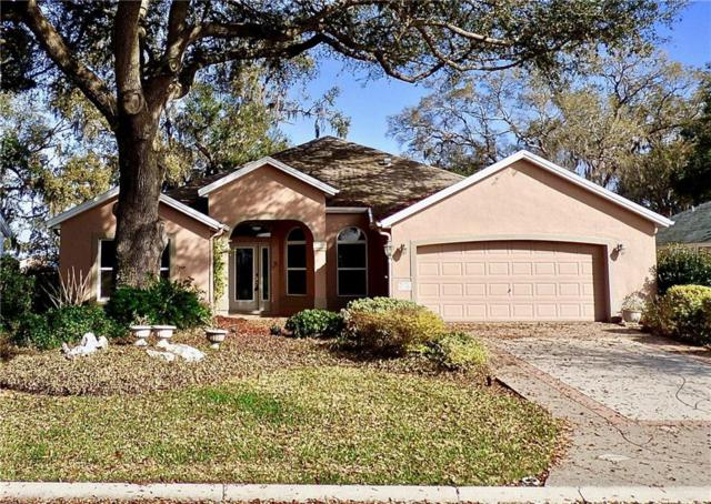 17029 SE 76TH CREEKSIDE Circle, The Villages, FL 32162 (MLS #G4853107) :: Realty Executives in The Villages