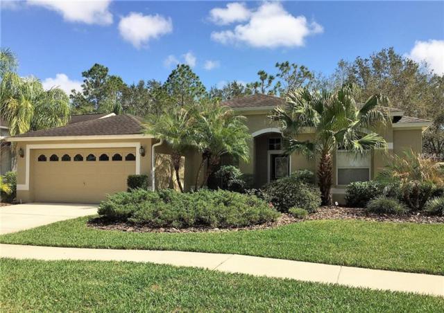 10146 Whisper Pointe Drive, Tampa, FL 33647 (MLS #G4853119) :: Delgado Home Team at Keller Williams
