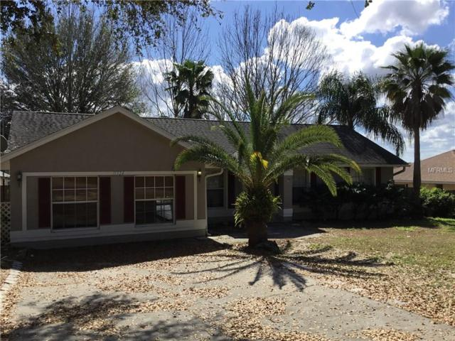 11324 Mandarin Drive, Clermont, FL 34711 (MLS #G4853126) :: KELLER WILLIAMS CLASSIC VI
