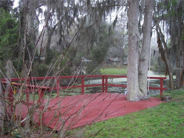 1085 Cr 457, Lake Panasoffkee, FL 33538 (MLS #G4853211) :: Griffin Group
