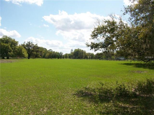 Cr 546N, Bushnell, FL 33513 (MLS #G4853367) :: Team Pepka