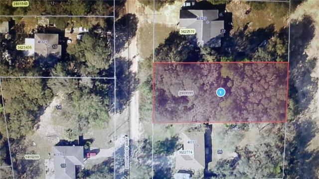 Dogwood Way, Lady Lake, FL 32159 (MLS #G4853392) :: The Lockhart Team