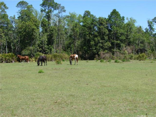 Paisley, FL 32767 :: Griffin Group