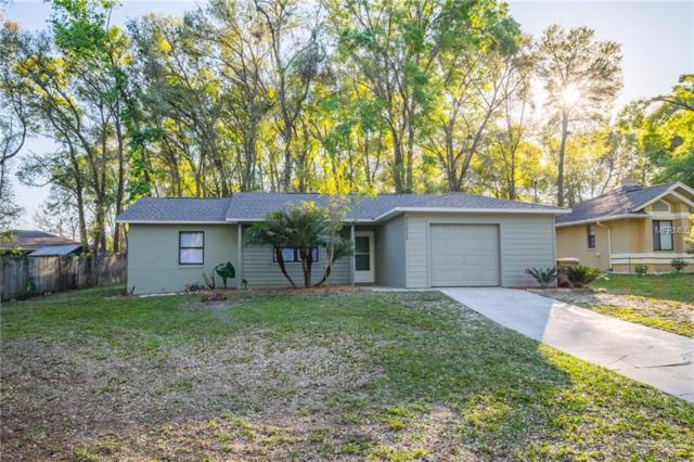 30935 Lochmore Circle, Mount Plymouth, FL 32776 (MLS #G4854280) :: Griffin Group