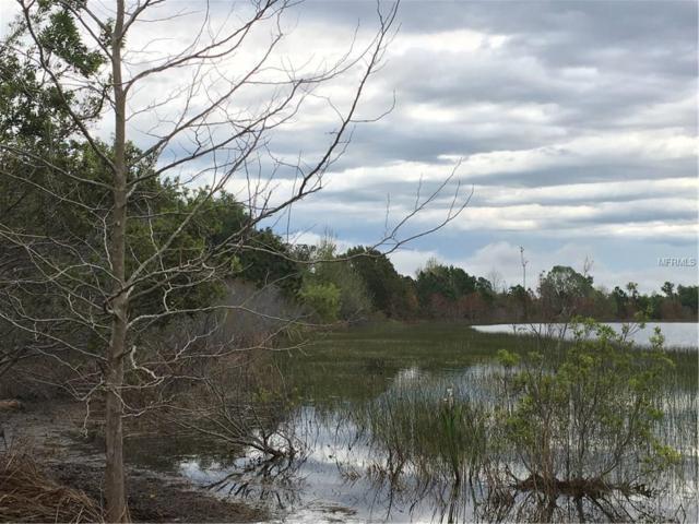 Lake Emma Road, Groveland, FL 34736 (MLS #G4854556) :: Griffin Group