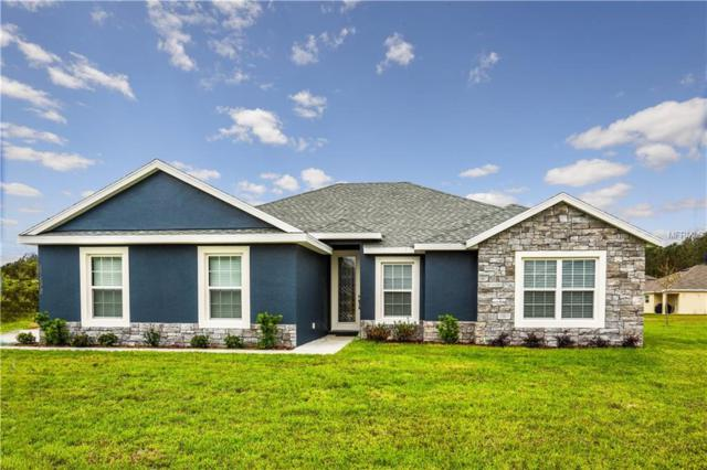 LOT 201 S Em En El Grove Road, Leesburg, FL 34788 (MLS #G4854858) :: The Duncan Duo Team