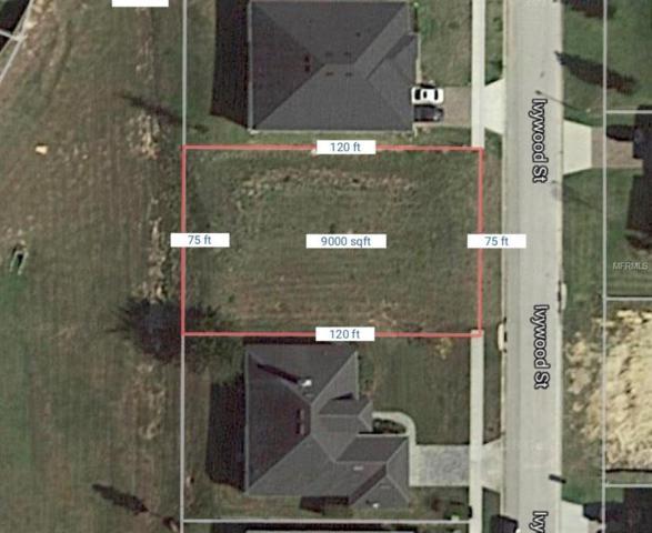 9315 Ivywood Street, Clermont, FL 34711 (MLS #G4854949) :: The Lockhart Team