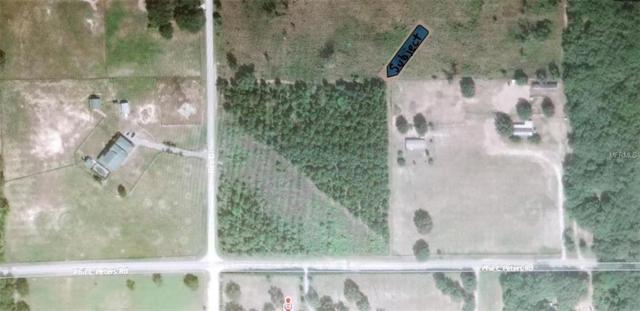 17483 Phil C Peters Road, Winter Garden, FL 34787 (MLS #G4855075) :: Team Pepka