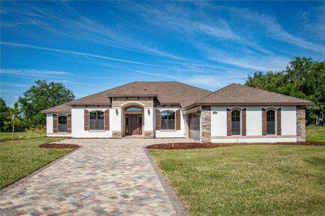 323 Two Lakes Lane, Eustis, FL 32726 (MLS #G4855147) :: Griffin Group