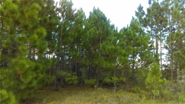 Salyers Road, Clermont, FL 34714 (MLS #G4855212) :: RE/MAX Realtec Group