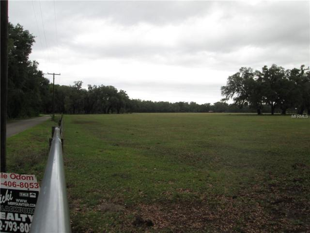 3780 County Road 721, Webster, FL 33597 (MLS #G5000097) :: The Duncan Duo Team