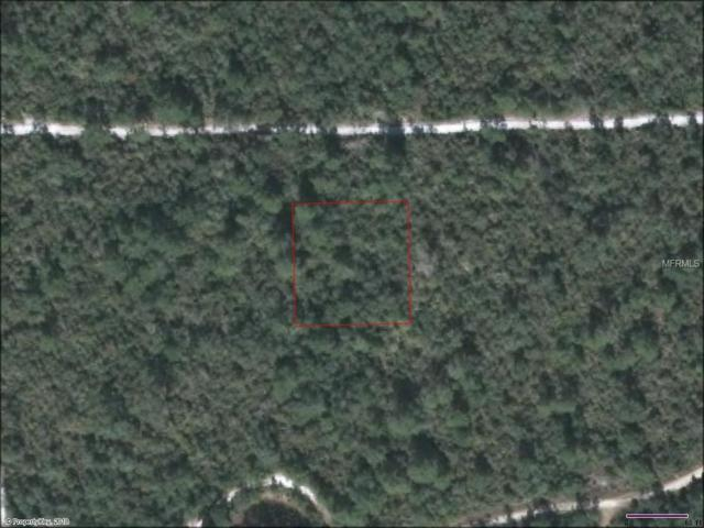 No Name, De Leon Springs, FL 32130 (MLS #G5000248) :: The Lockhart Team
