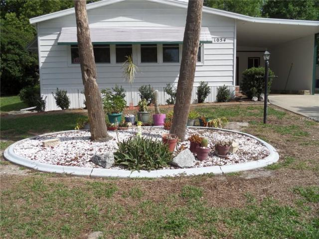 1054 Kelsea Circle, The Villages, FL 32159 (MLS #G5000268) :: Realty Executives in The Villages