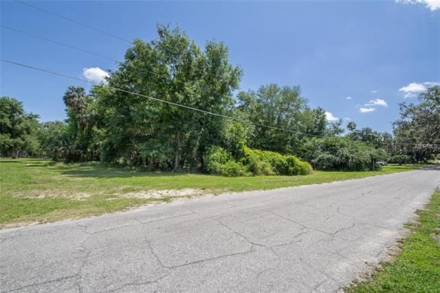 E Orange Avenue, Yalaha, FL 34797 (MLS #G5000328) :: NewHomePrograms.com LLC