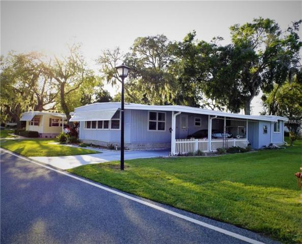 112 Audubon Drive, Leesburg, FL 34748 (MLS #G5000400) :: RealTeam Realty